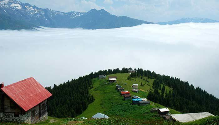 Trabzon Günübirlik Pokut Yaylası Turu