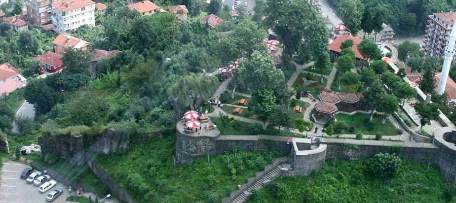 قلعة مدينة ريزا